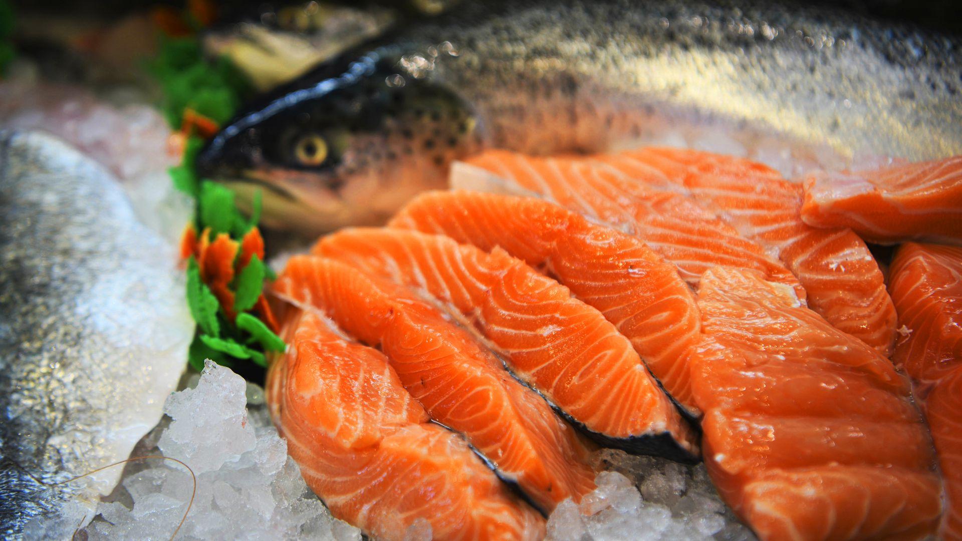 Ryby - Najlepsi w 2021