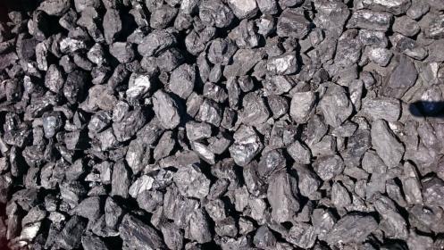 groszek węgiel kamienny
