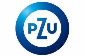 Grupowe ubezpieczenie pracownicze typ P Plus, oferta
