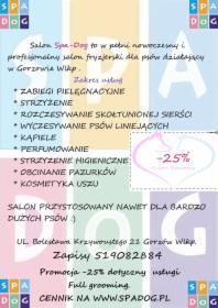 Spadog Salon Groomerski Psi Fryzjer Gorzów Wielkopolski Oferta Nr