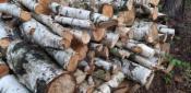 Drewno opałowe i do wedzenia z transportem, 2