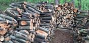 Drewno opałowe i do wedzenia z transportem, oferta