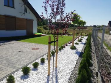 Usługi ogrodnicze automatyczne nawadnianie trawa z rolki z siewu brukarstwo tarasy, oferta