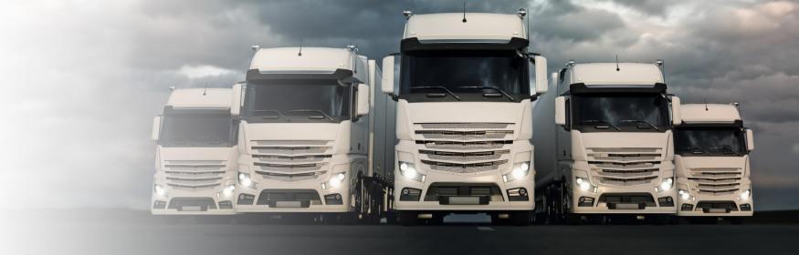 Transport międzynarodowy cała Europa