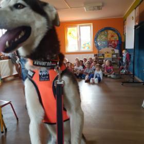Edukacja z psami