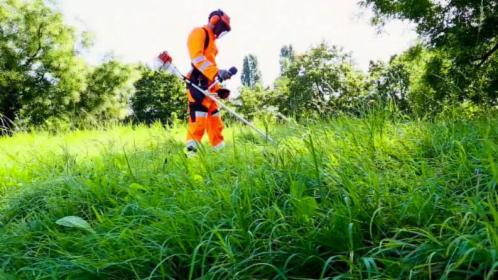 Koszenie trawy. Uprawa ziemi pod ogrody. Cięcie i łupanie drewna., Rojów, oferta