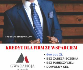 Kredyty dla Firm z gwarancją BGK