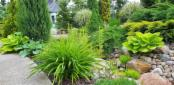 Budowa i zakładanie ogrodów, Włoszakowice, 3