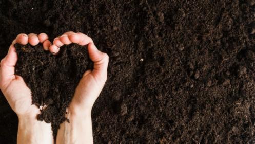 Rekultywacja terenu - prace ogrodnicze