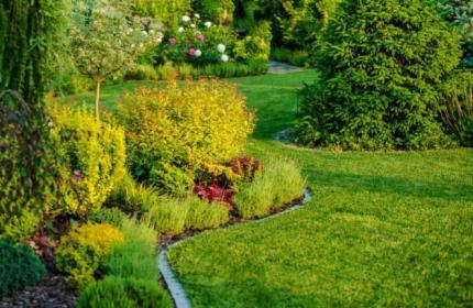 Projektowanie i kompleksowe zakładanie ogrodów