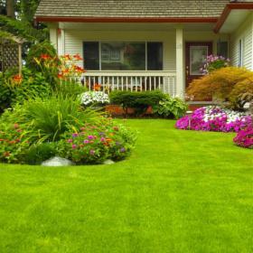 Zakładanie trawników z rolki i z siewu - kompleksowo - któtkie terminy