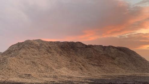 Zrębka biomasa, Darnowiec, oferta