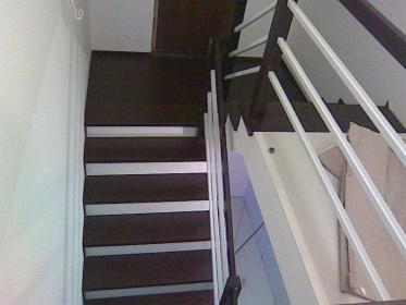 schody z wenge, oferta