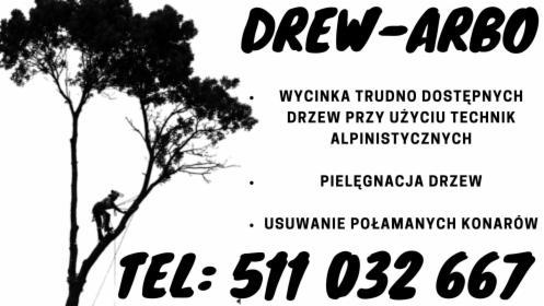 Wycinka i pielęgnacja drzew metoda alpinistyczną, Cekcyn, oferta