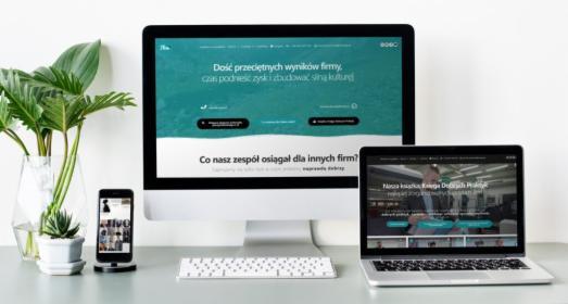 Wykonanie strony internetowej opartej o WordPress, Borówiec, oferta