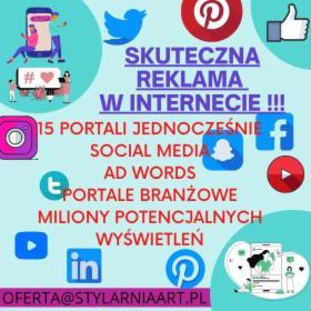 Strony internetowe oraz pozycjonowanie i kampanie reklamowe !!, Bytom, oferta