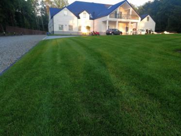 zakładanie ogrodów , usługi ogrodnicze, Tarnów, oferta