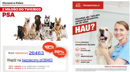 Ubezpieczenie kosztów leczenia psa