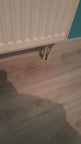 Panele podłogowe, Mosty, oferta