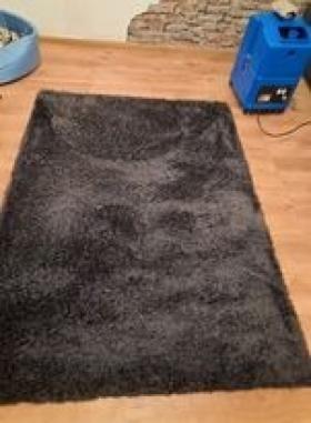 Pranie dywanów, wykładzin, Gdańsk, oferta