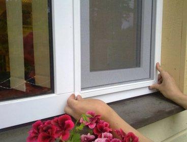 Moskitiera okienna na wymiar, oferta
