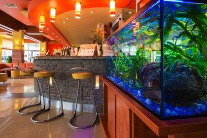 Zdjęcia hotelu / restauracji, oferta