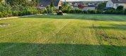 Koszenie trawnikow, 3