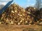 drewno kominkowe, oferta