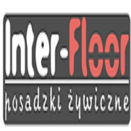 Inter-floor Adam Meres - Podłoga z Żywicy Brzeźnica