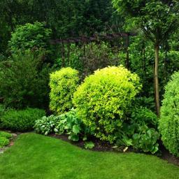 Projektowanie ogrodów Cierpice 9