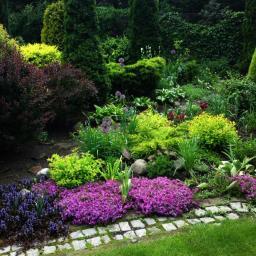 Projektowanie ogrodów Cierpice 2