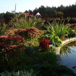 Projektowanie ogrodów Cierpice 19