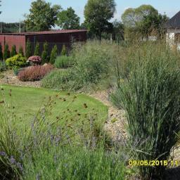 Projektowanie ogrodów Cierpice 7