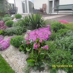 Projektowanie ogrodów Cierpice 3