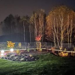 W ogrodzie, przed domem Bydgoszcz