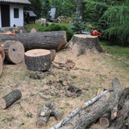 Tom firma usługowa - Parki, ogrody, rezerwaty Klucze