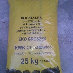 PBD Bogmalex - Ekogroszek Rybnik