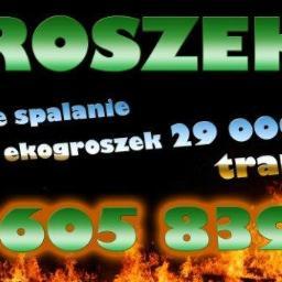 Ekogroszek - Organizator Imprez Firmowych Częstochowa