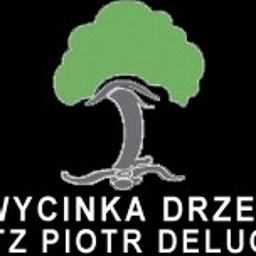 ZAGOSPODAROWANIE TERENÓW ZIELONYCH PIOTR DELUGA - Altany Ostrów Mazowiecka