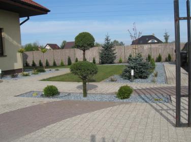 SOSENKA- Adam Wawryło - Oczka wodne i baseny Dąbrówka