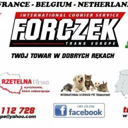 Forczek Trans Europe Dariusz Forczek - Przeprowadzki Podegrodzie