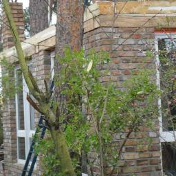 Ogrodnik Pszczew 8