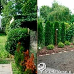 Strefa Zieleni - Projektowanie ogrodów Kościan