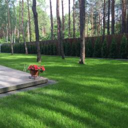W ogrodzie i domu Anna Adamczyk - Pielęgnacja Ogrodów Celestynów