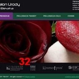 Freelancer, grafik komputerowy, progamista - Strony internetowe Legnica