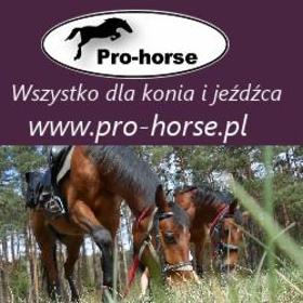44109604ac742 Sklep Jeździecki Pro-horse Dąbrowa Górnicza - Opinie, Kontakt