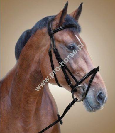aee819af770a4 Sklep Jeździecki Pro-horse. czapraki. strzemiona. odżywki. Zobacz więcej  ogłowie, tranzelki