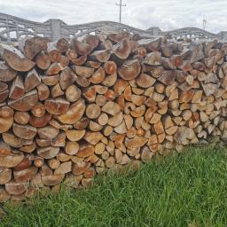 Suche drewno bukowe