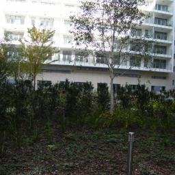 Ogrodnik Warszawa 1