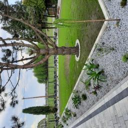 budowa ogrodu